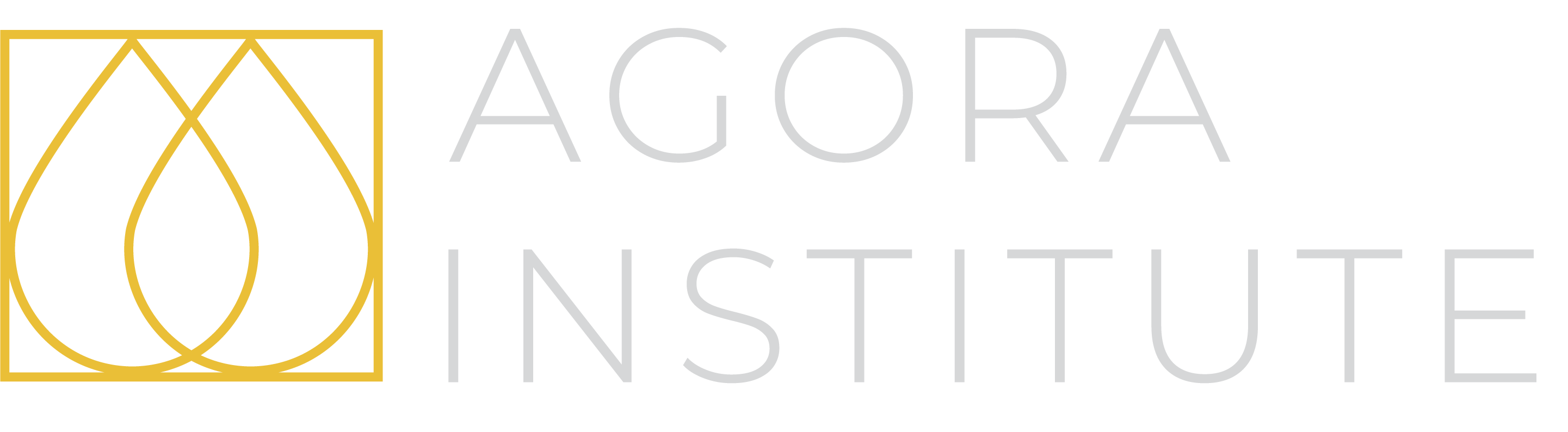 Agora Institute for Knowledge Management
