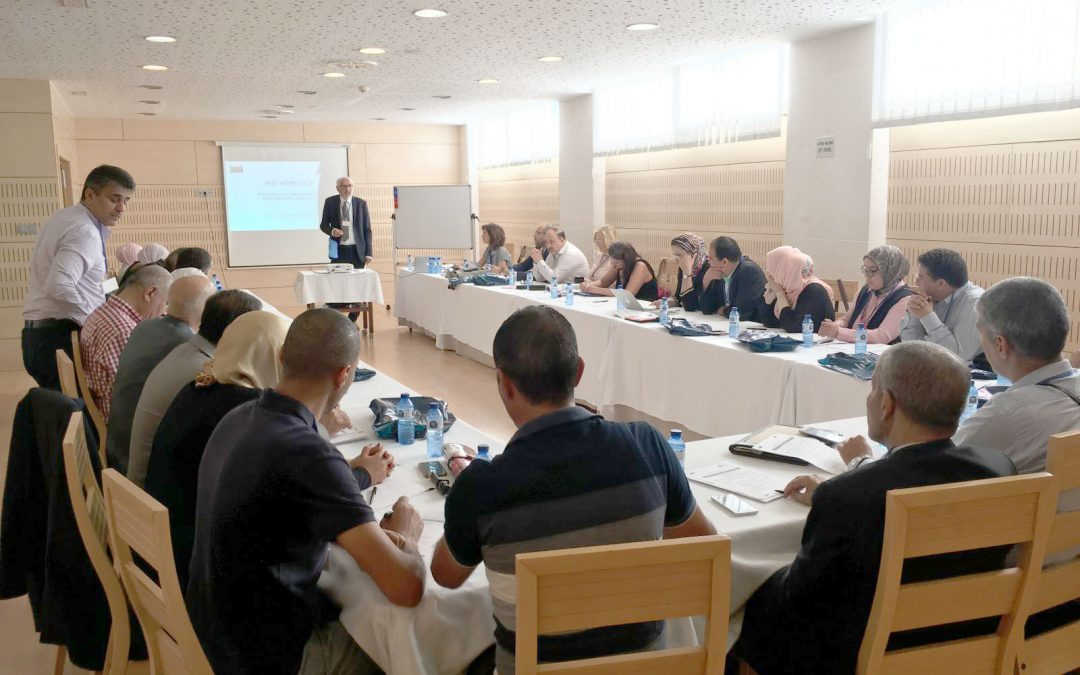 Rise Project Training on Performance Management in Alicante -Spain